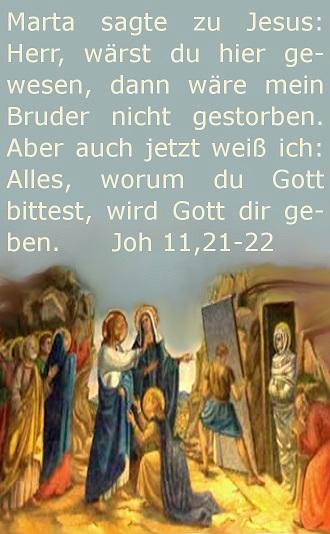 Joh 11