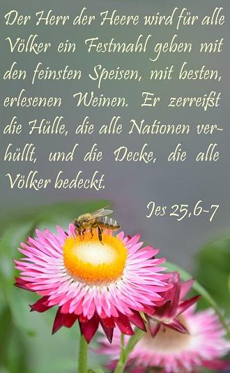 Jesaja 25